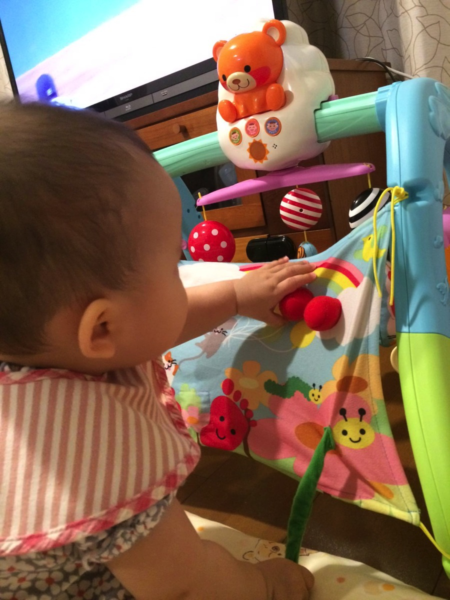 うちの赤ちゃん世界一 全身の知育 メリー&ジム